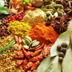 Healing-Herbs-and-Spices-Photo